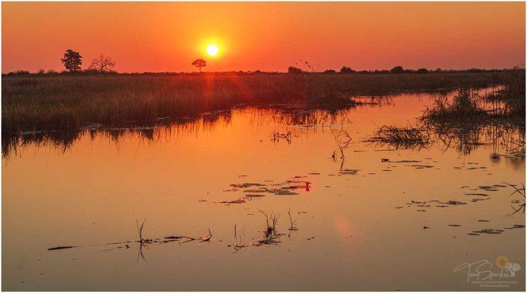 Linyati River Sunset - Namibia