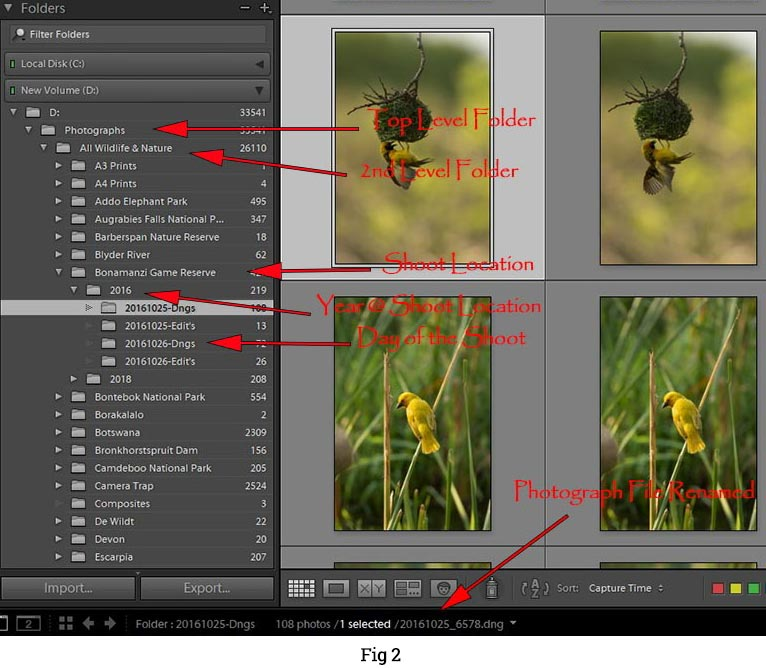 Lightroom-Workflow-Photo-File-Structure