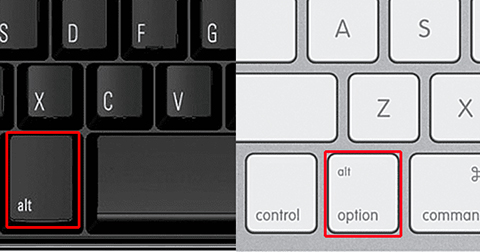Alt or Option Keys highlighted with red square