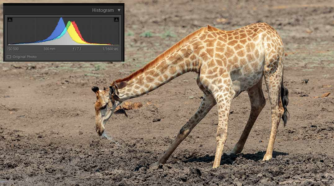 How to read a image histogram