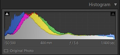 Histogram showing colour peaks - How to read an image histogram