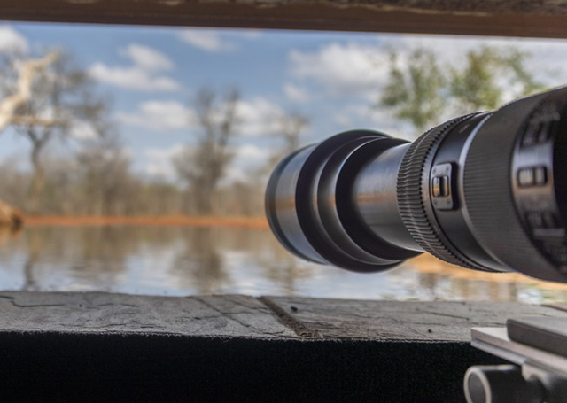 Camera lens sticking out of a bird hide