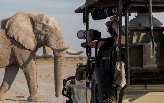 What is a photography safari - Safari Vehicle with photographers