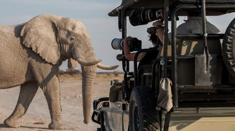 What is a photography safari - Safari Vehicle with photographers