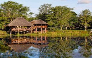 Bird Hide - Bonamanzi