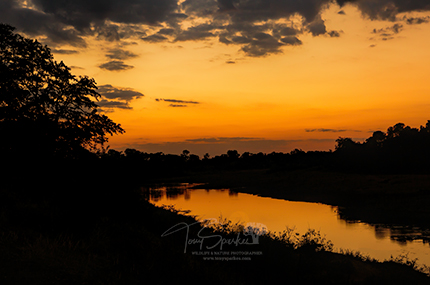 Shingwedzi River Sunset Landscape